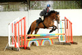 Lime Kiln Farm Equestrian Centre
