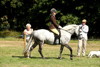 Class 76 - Confined Novice Kingsford Ridden Mountain and Moorland Pony Final