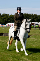 Class 57 - Ridden competition/ Dressage Horse/Pony