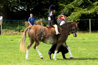 Class 98 - Pony Most Suitable for pony club activities