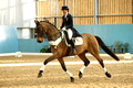 Bristish Dressage Winter Regional Championships at Easton and Otley College 13-17/2/18