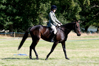 Class 59 - Unaffiliated Ridden hunter Type