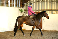 Side Saddle Day with Clare Simper at Limekiln Farm Ec 18/11/16
