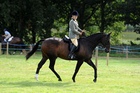 Class 36 - Amateur Riders Riding Large Horse