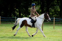 Class 35 - Amateur Riders Riding Small Horse/Hunter/Cob/Hack